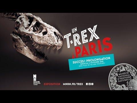 """Exposition """"Un T. rex à Paris"""""""