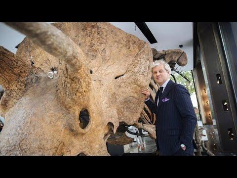 Le squelette du plus grand tricératops connu au monde exposé à Paris avant sa mise aux enchères.