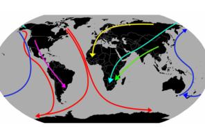 Migration et géopolitique: quelles relations?