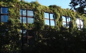 La Mairie veut «végétaliser» Paris