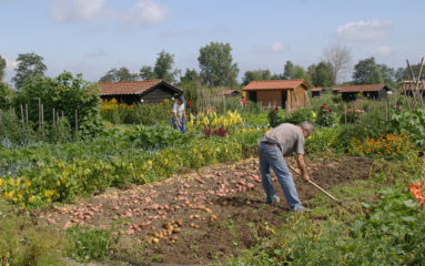Oise: les «jardins familiaux» pris d'assaut