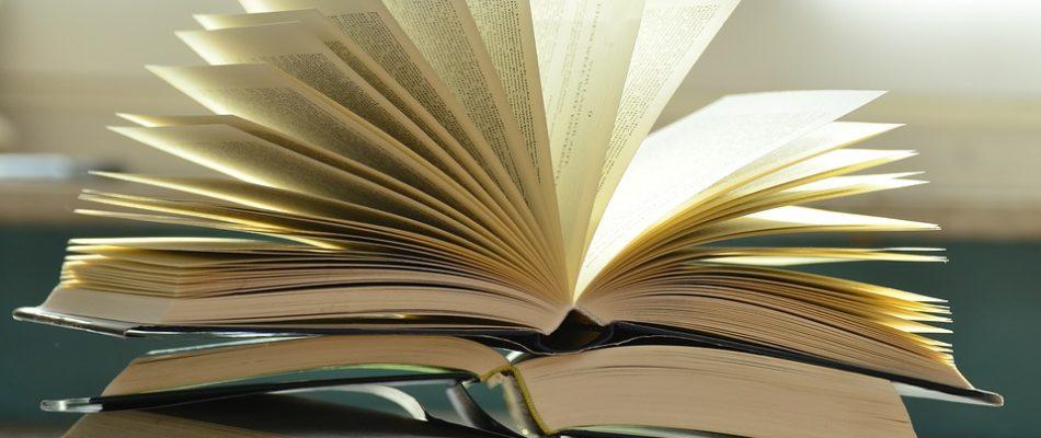 Livres: les bouquinistes et libraires rouvrent à Paris!