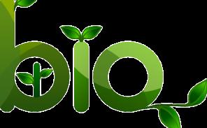 Vers un développement des halles «bio» à Paris