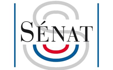 Des sénateurs veulent museler internet