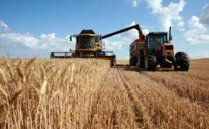 Des agriculteurs mettent la pression sur la grande distribution