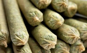 Cannabis: la préfecture rejette les tests voulus par Valérie Pécresse