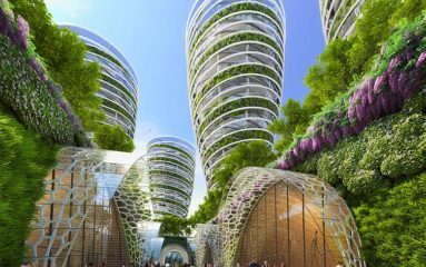 La «biodiversité» devient «citoyenne d'honneur» de la Ville de Paris