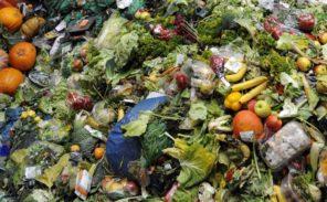 Plan anti-gaspillage alimentaire en Ile-de-France