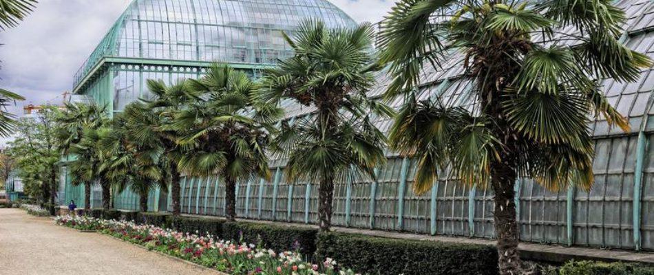 Extension de Roland Garros: lueur d'espoir pour les défenseurs du patrimoine