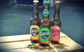 La bière « Gallia » renaît de ses cendres