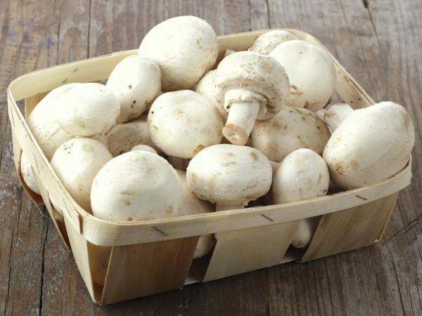 la recette du mois la salade de champignons de paris parisvox. Black Bedroom Furniture Sets. Home Design Ideas