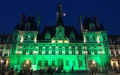 Municipales à Paris: tensions entre Villani et Griveaux?