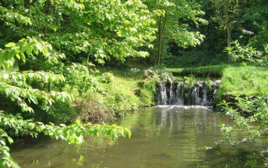 Les naturistes débarquent au bois de Vincennes!