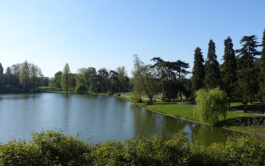 En 2019, on pourra se baigner dans un lac du Bois de Vincennes!