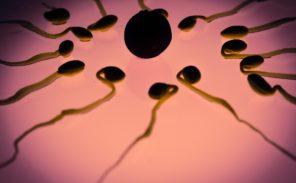 Baisse de la fertilité masculine en Occident