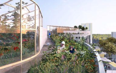 La plus grande ferme maraîchère de la capitale ouvrira fin 2019 sur les toits de Paris