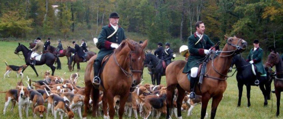 Des députés demandent l'interdiction de la chasse à courre