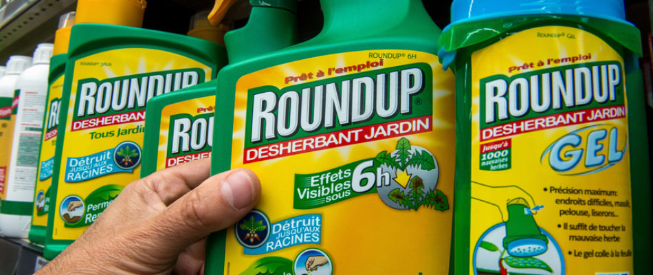 Double jeu du gouvernement sur l'interdiction du glyphosate