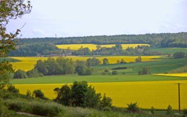 Les «pays»: la Brie
