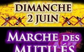 Gilets Jaunes: une marche pour les «mutilés»