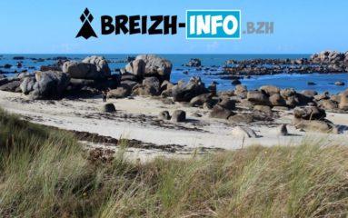 Breizh-Info: «Des Parisiens ont retrouvé de vieux réflexes coloniaux vis-à-vis de la Bretagne.»