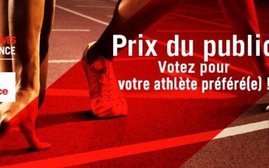 Palmarès des victoires sportives franciliennes