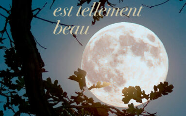 Littérature : Sébastien Lapaque récompensé